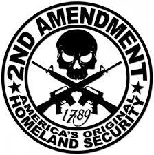 Amazon Com 2nd Amendment Decal Americas Original Homeland Security Car Bumper Window Laptop Wall Sticker Freedom Pro Gun Shipped From Usa Sports Outdoors