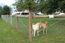 Woven Wire Fence Installation In Ranch House With Acreage In 2020 Wire Fence Dog Fence Fence Planning