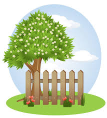 What Is The Best Type Of Fencing For You Scheider Fences Acworth Georgia