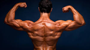 صور عضلات صور رجال يلعبون حديد صور كمال اجسام للفيس بوك 2020