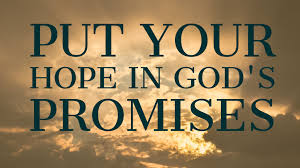 Put your hope in God's promises - Daily Devotions with Jon Dyer