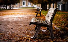 bench hd wallpaper background image