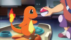 Tierno (MS020)   Pokémon Wiki
