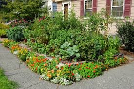 image front yard garden