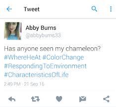 Module 1 - Abby Burns' Portfolio