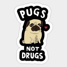 pug t shirt pugs not s gifts pug