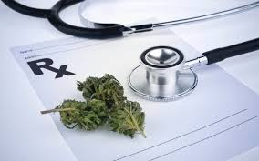 Tampa Marijuana Doctors - Medical Marijuana Doctor & Cards ...
