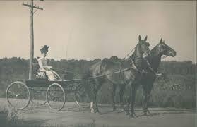 Mary Ida Young (Stephenson) (1865 - 1960) - Genealogy
