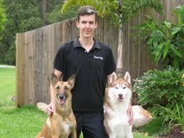 Dog Fence Distributor Gold Coast Beaudesert Northern Nsw Hidden Fence