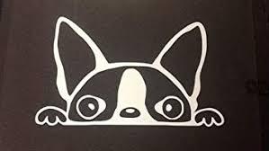 Amazon Com Peeking Boston Terrier A14 Vinyl Decal Sticker Car Truck Laptop Netbook Window Automotive