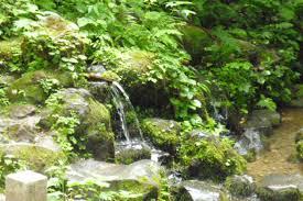 「湧水」の画像検索結果
