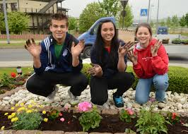 Community bonds take root through flower project
