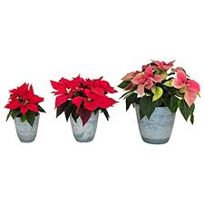 unbreakable set of 3 small flower pots
