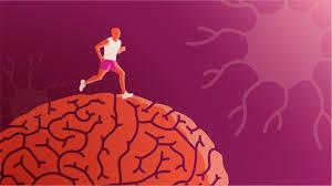 Kuvahaun tulos: brain health