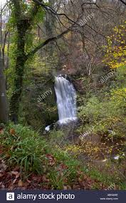 Falling Foss waterfall in autumn May Beck North Yorkshire Moors Stock Photo  - Alamy