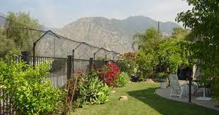 Purrfect Fence Reviews Experiences Cat Fence Cat Garden Outdoor Cat Enclosure