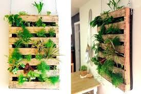 wall garden indoor vertical diy