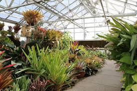 south texas botanical gardens