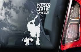 Border Collie On Board Car Window Sticker Dog Sign Etsy
