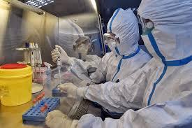 Новая версия: коронавирус мог вырваться из лаборатории, работавшей в 300  метрах от рынка
