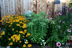How To Plant A Perennial Flower Border The Radish Patch