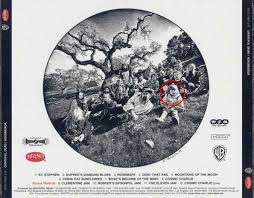 fact courtney love was on the back cover of the grateful dead