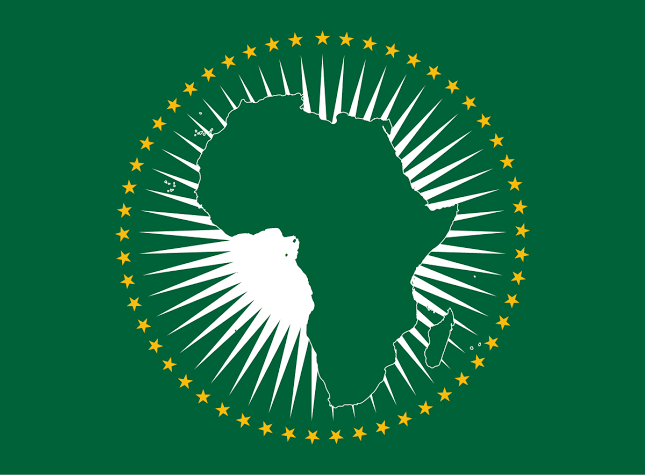 Image result for african union logo""