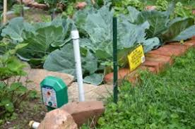Electric Fence Electric Garden Fence Groundhog