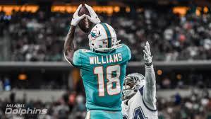 The Glitch Preston Williams - Miami Dolphins