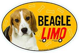 Amazon Com Prismatix Decal Beagle Car Magnets Beagle Limo On Board Oval 6 X 4 Auto Truck Refrigerator Mailbox Funny Car Decals Dog Magnet Beagle Automotive