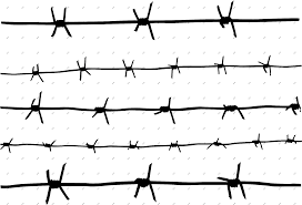 Barbwire Barbed Wire Fence Png Clipart Full Size Clipart 2144895 Pinclipart