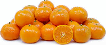 cutie tangerines information and facts