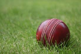 Bilcock stars with bat and ball in Henlow win | Biggleswade Today