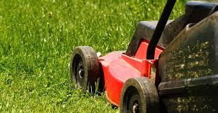 Wanneer en hoe vaak maai je je gras / tuin? Dit en tips voor ...