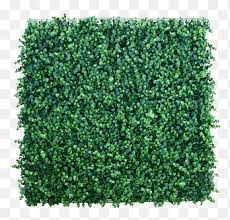 Lawn Artificial Turf Garden Hedge Others Fence Grass Png Pngegg