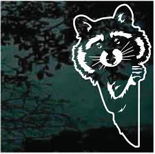 Raccoon Car Decals Stickers Decal Junky
