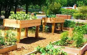cedar garden bed inlandempire info