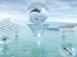 49 free 3d dolphin wallpaper on