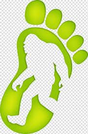 Green Leaf Logo Bigfoot Car Decal Sticker Bumper Sticker Yeti Footprint Transparent Background Png Clipart Hiclipart