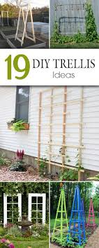 19 awesome diy trellis ideas for your