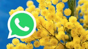 Immagini GIF Festa della Donna 2020: le migliori per WhatsApp ...
