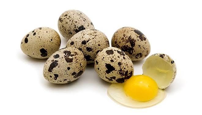 """Hasil gambar untuk telur puyuh"""""""