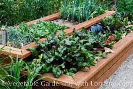 the raised bed vegetable garden