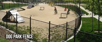 Dog Park Fencing Archives Gyms For Dogs Dog Park Park Dogs