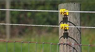 Ultimate Electric Fencing Guide Select Electric Fence Options By Animal Dairy Cattle Beef Cows Goat Electric Fencing For Horses Electric Fence Farm Fence