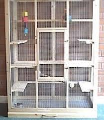 need a chinchilla cage setup idea if