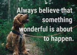 motivational quotes to help you achieve your dreams com