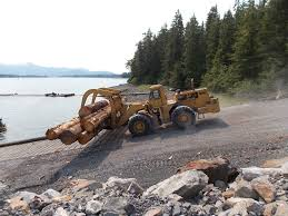 Forest Service documents don't show fix for Tongass timber sales, advocacy  group says