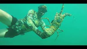 Catch Monster Lobster With Your Hands ...