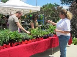 farmers market ing to bernice garden